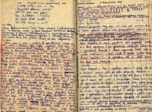 Дневник Нины Луговской